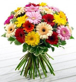 Ангарск цветы с доставкой дешево купить в минске розовые розы